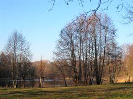 Mühlenbecker Kiessee (19)
